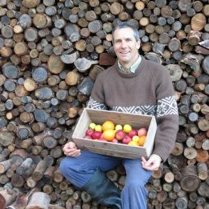 David at woodstack